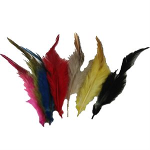 FEATHER FOR NAIL DECO(5) -